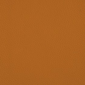 B40 - orange