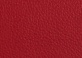 Rouge B24